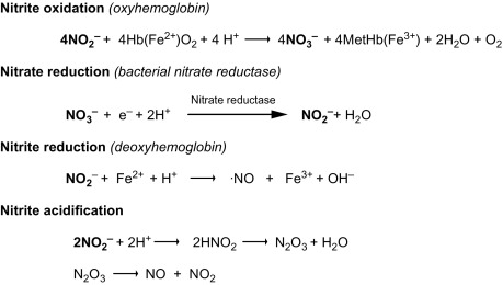analysis of nitrite and nitrate in foods overview of chemical