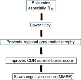 Vitamin B12 - ScienceDirect