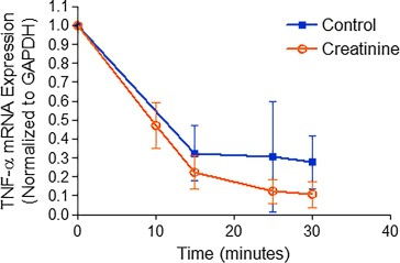 Creatinine downregulates TNF-α in macrophage and T cell