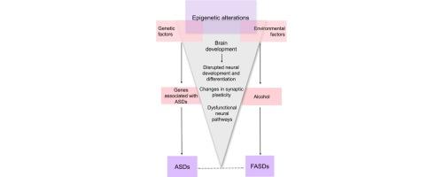 Study Links Autism To Epigenetic >> Epigenetic Mechanisms A Possible Link Between Autism Spectrum