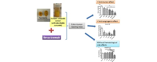 Combined Therapy Using Bevacizumab And Turmeric Ethanolic Extract With Absorbable Curcumin Exhibited Beneficial Efficacy In Colon Cancer Mice Sciencedirect