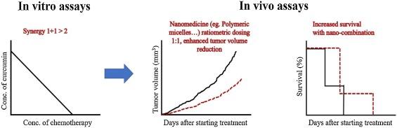 Curcumin in combination with anti-cancer drugs: A nanomedicine
