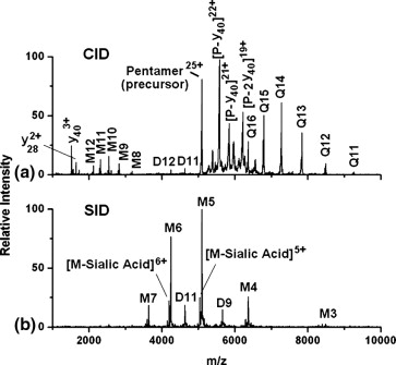 1 s2.0 S1044030508003747 gr5 surface induced dissociation shows potential to be more  at fashall.co