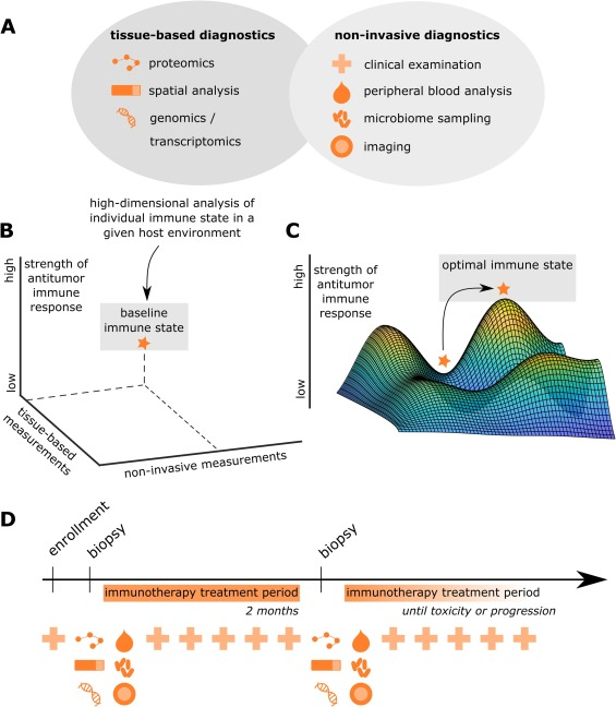 Genomics And Emerging Biomarkers For Immunotherapy Of Colorectal Cancer Sciencedirect