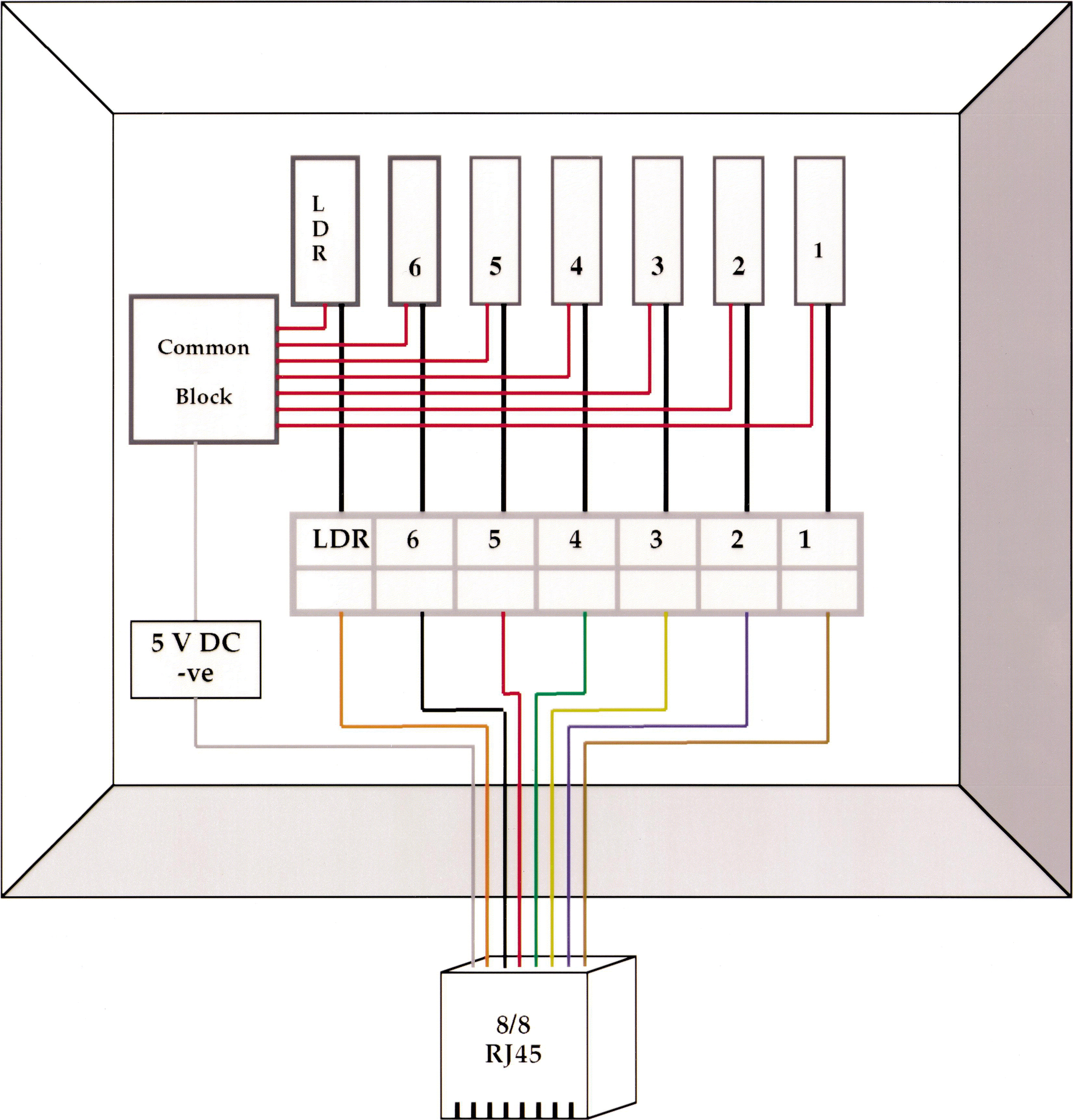 Placing Ocular Mutants Into A Functional Context Chronobiological 587 Block Signal Wiring Diagram Cage Bay Specific Circuit Connection In The Cabinet Junction Box