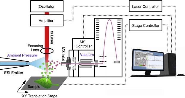 Nonresonant, femtosecond laser vaporization and electrospray post