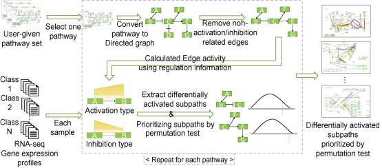 MIDAS: Mining differentially activated subpaths of KEGG pathways