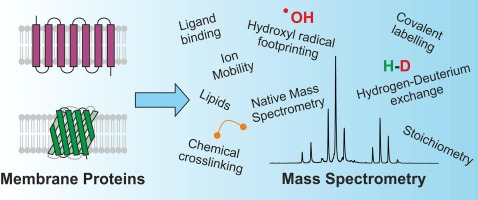 Mass Spectrometry Enabled Structural Biology Of Membrane Proteins
