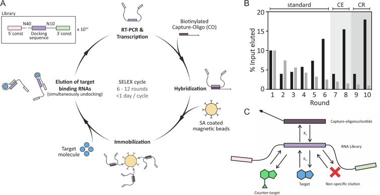 RNA-based Capture-SELEX for the selection of small molecule