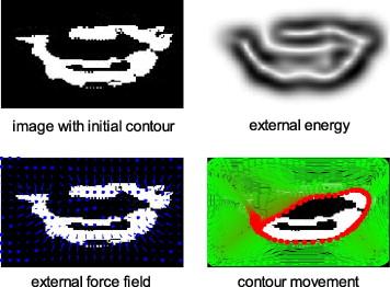 Geometrical-based lip-reading using template probabilistic multi