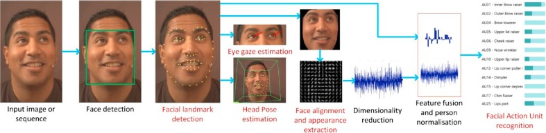 Motion-based countermeasure against photo and video spoofing
