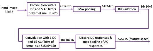 Interpretable convolutional neural networks via feedforward