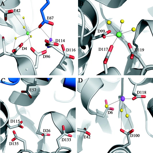 Crystal structure of the VapBC-15 complex from Mycobacterium