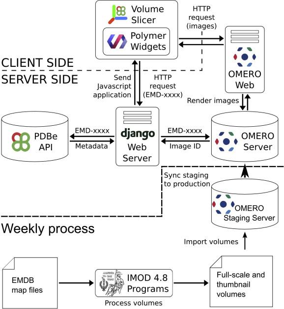 Web-based volume slicer for 3D electron-microscopy data from EMDB ...