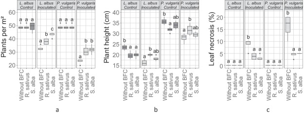 The potential of Brassicaceae biofumigant crops to manage