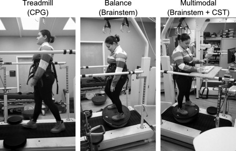 Acute changes in soleus H-reflex facilitation and central motor