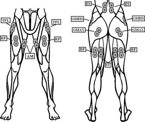 Neuromuscular Response Of Hip Spanning And Low Back Muscles To Medio