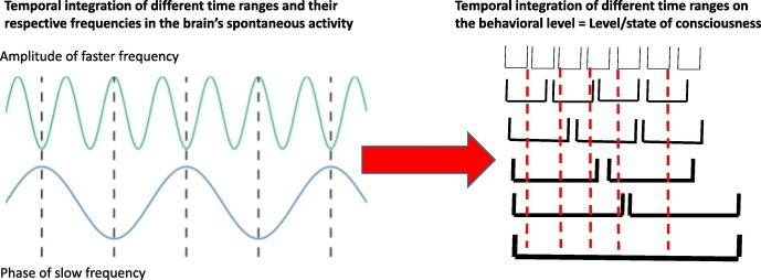 """Paradox of slow frequencies"""" – Are slow frequencies in upper"""