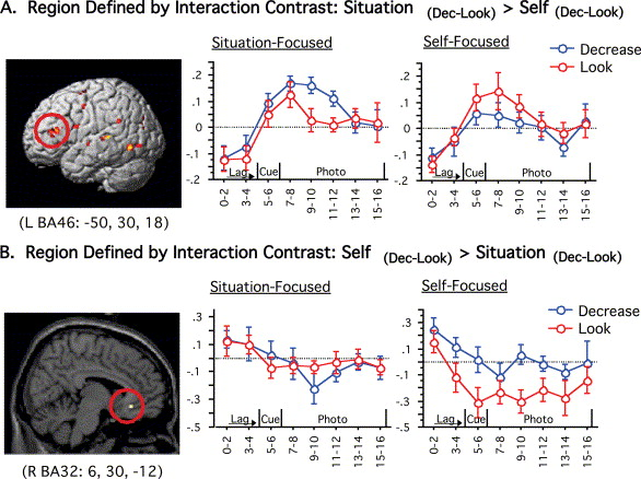For Better Or For Worse Neural Systems Supporting The Cognitive