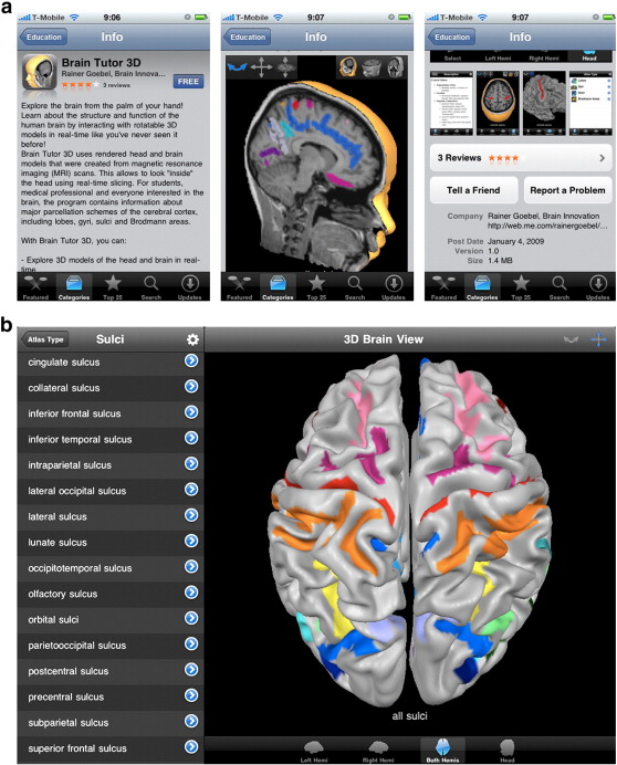Bv Brain Tutor For Mac