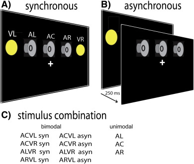 Audio-visual synchrony modulates the ventriloquist illusion