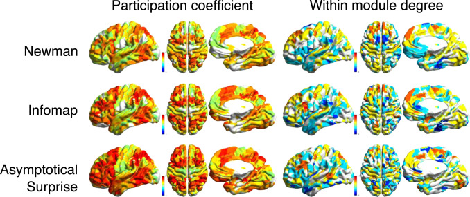 Community detection in weighted brain connectivity networks