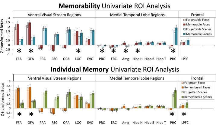 Memorability: A stimulus-driven perceptual neural signature