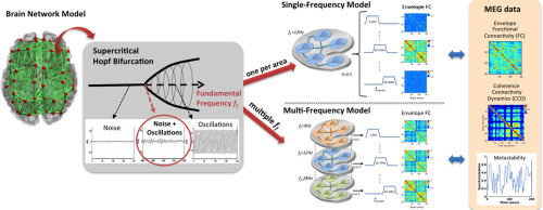 Single or multiple frequency generators in on-going brain