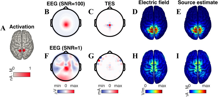 Optimal use of eeg recordings to target active brain areas with fig 2 ccuart Gallery