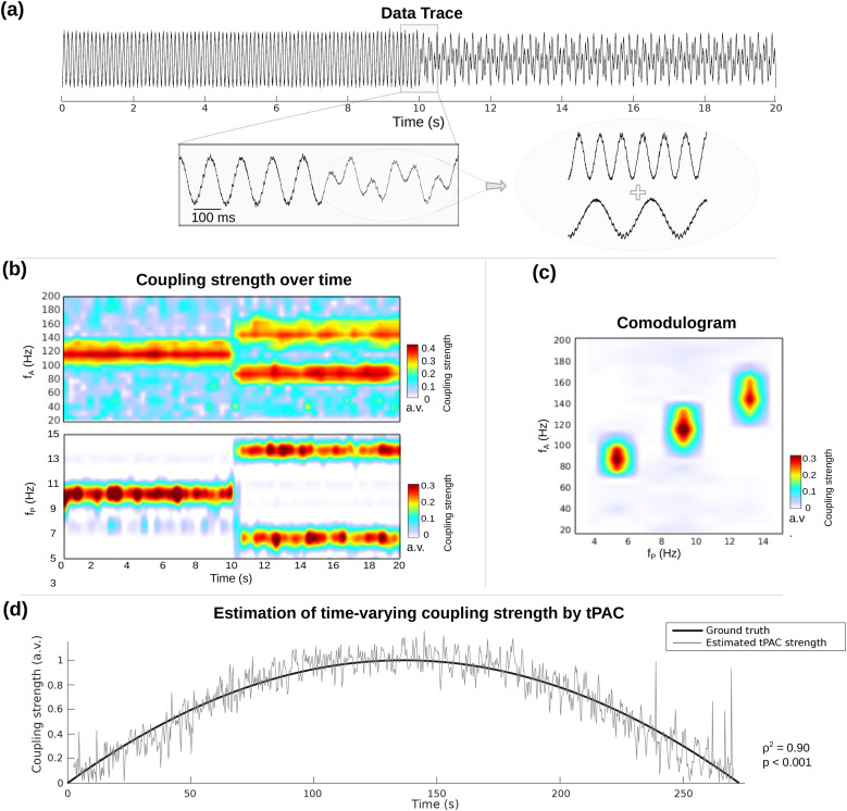 Time-resolved phase-amplitude coupling in neural