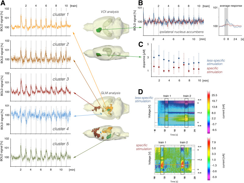 Contributions of dopaminergic and non-dopaminergic neurons