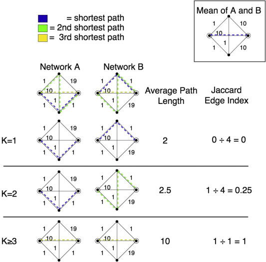 Normative pathways in the functional connectome - ScienceDirect