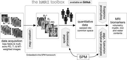 hMRI – A toolbox for quantitative MRI in neuroscience and