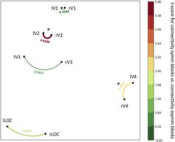 The representation of symmetry in multi-voxel response