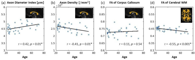 Age-related alterations in axonal microstructure in the corpus