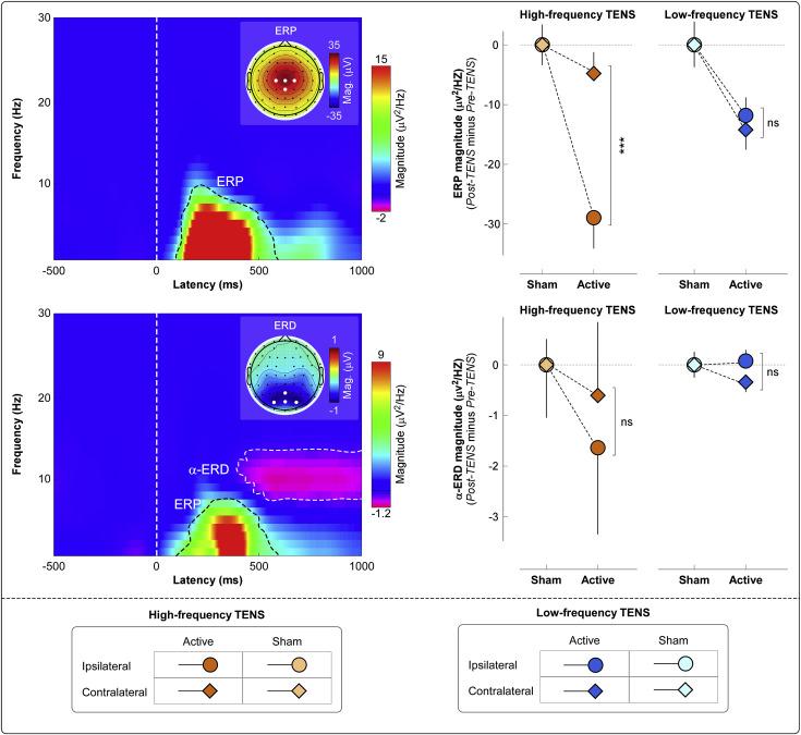 Neurobiological mechanisms of TENS-induced analgesia