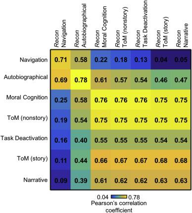 Beyond consensus: Embracing heterogeneity in curated neuroimaging