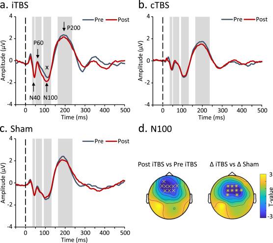 The dorsomedial prefrontal cortex as a flexible hub