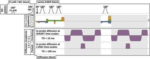 Neuroimage - Most Recent Published Articles - Elsevier