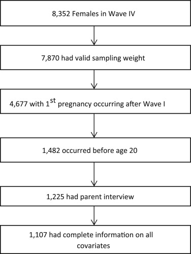 The Association Between Prepregnancy Parental Support and