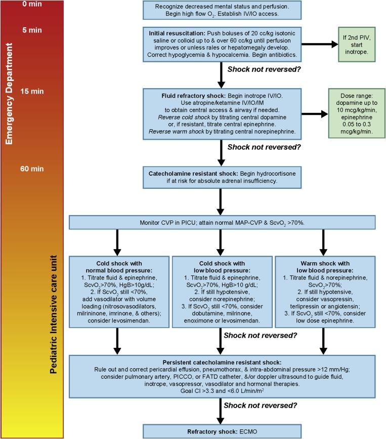 Treatment of Meningococcal Disease - ScienceDirect