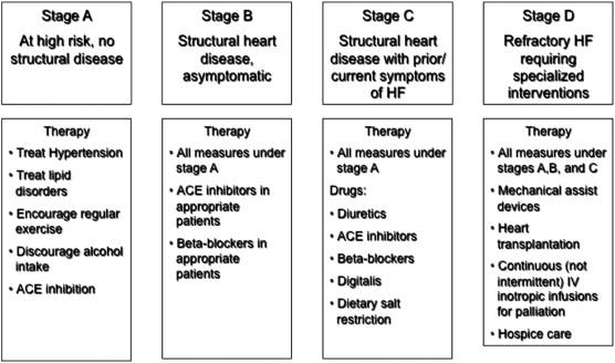The Pathophysiology Of Heart Failure Sciencedirect