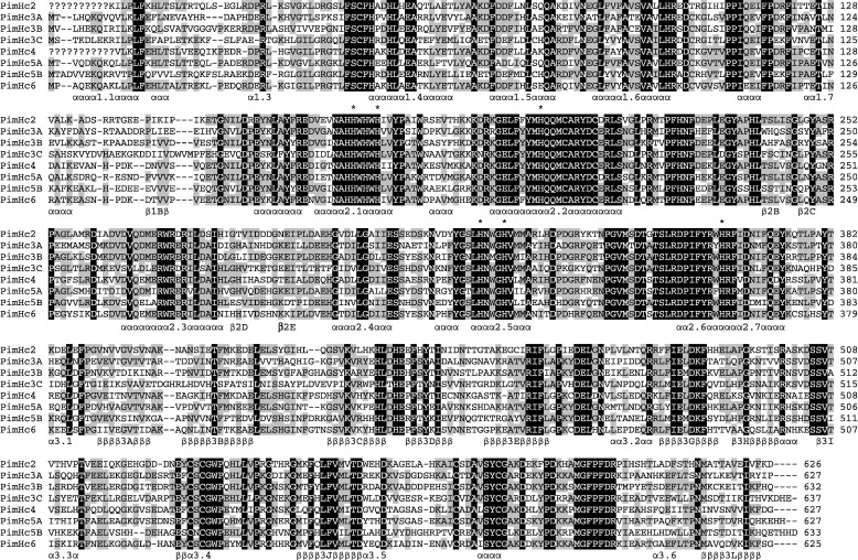 A 454 sequencing approach for large scale phylogenomic