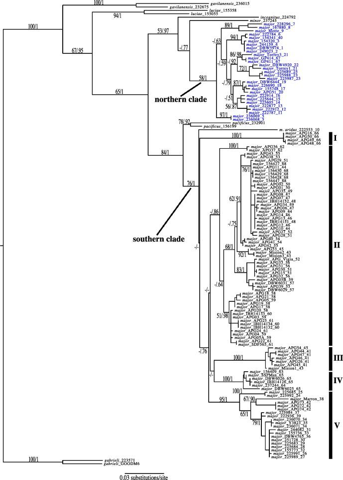 Molecular systematics of batrachoseps caudata plethodontidae in download full size image ccuart Gallery