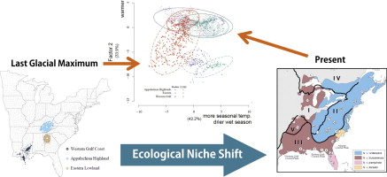 A stable niche assumption-free test of ecological divergence