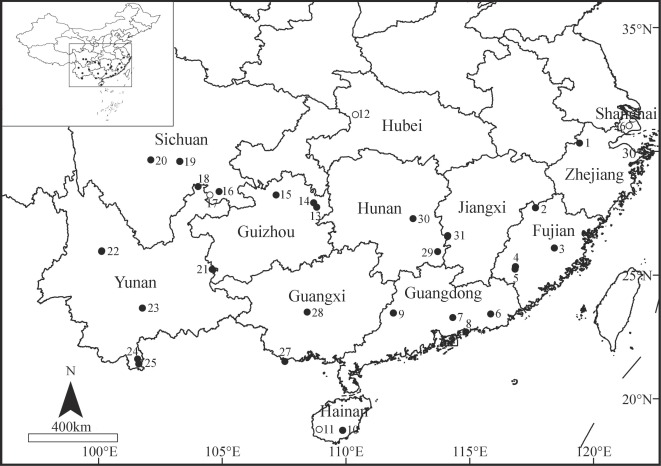 phylogenetic evaluation of amynthas earthworms from south china 115 Volt Outlet download full size image