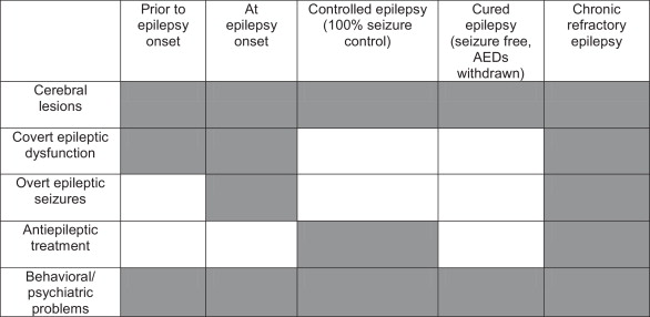 Potential factors affecting cognition before and at epilepsy onset, and  thereafter. Gray boxes indicate a potential impact.