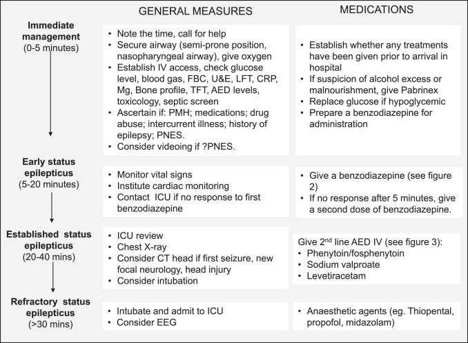Medical management of status epilepticus: Emergency room to