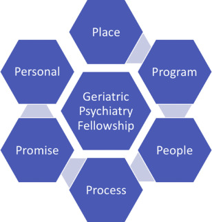 Advice on How to Choose a Geriatric Psychiatry Fellowship