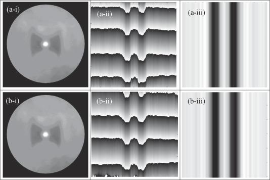 Refractive index retrieving of polarization maintaining